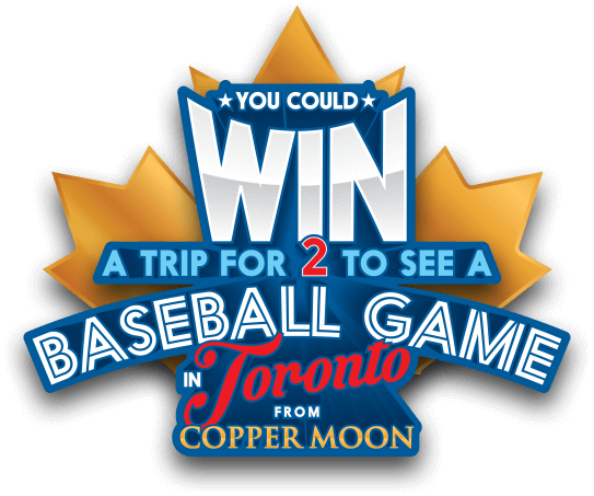 Enter for a chance to WIN a trip to see a Baseball Game in Toronto.